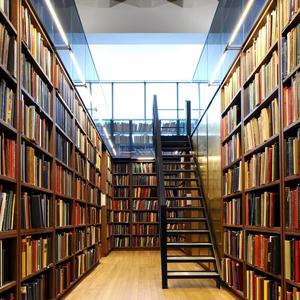 Библиотеки Змеиногорска